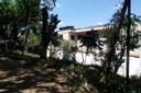 Praça dos Meninos tem poda de árvores