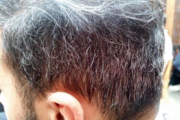 Cabelo grisalho é a falta de pigmentação capilar que geralmente surge entre  35 e 45 anos - Foto  Maristela Caretta RRO 0b20374238