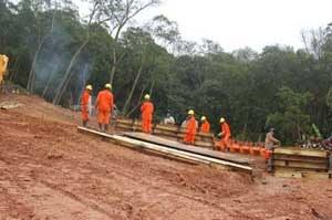 Gasoduto elimina 70 hectares de Mata Atlântica