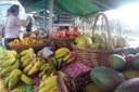Produção de alimentos orgânicos no Brasil cresce cerca de 30%; confira no Webnotícias